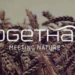 Togethair -Organiczna- Stylizacja